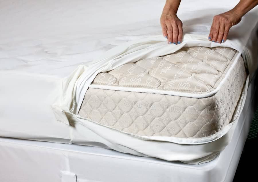 Best Bed Bug Mattress Covers Encasements PestSeek