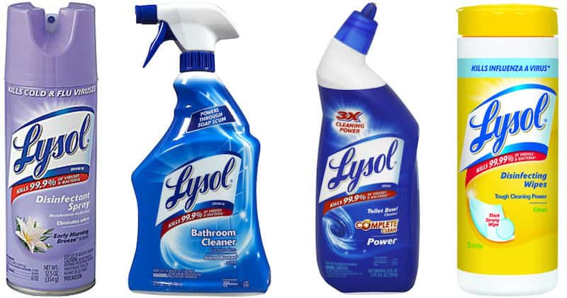 Does Lysol Kill Bed Bugs Pestseek