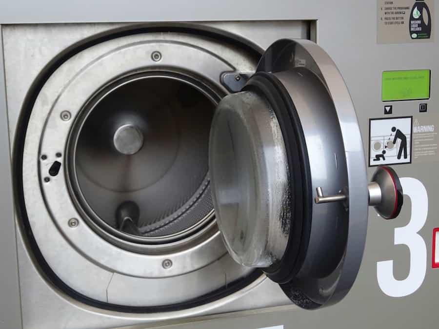 Do Washing Machines Kill Flea Eggs