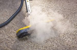 Does Steam Kill Bed Bugs