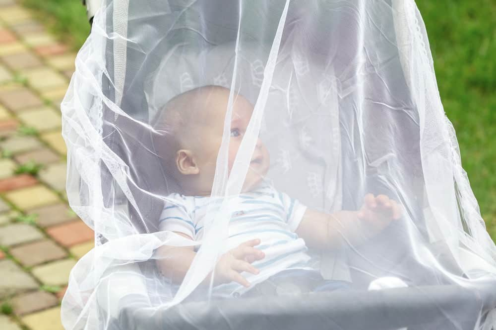 mosquito buggy net