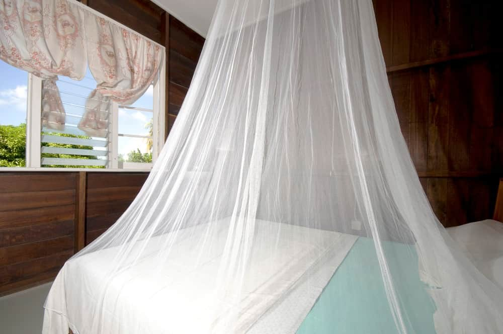 mosquito net on bed