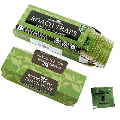 Best Roach Traps To Buy In 2020